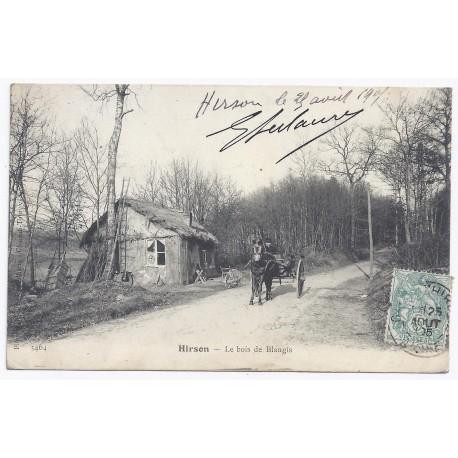 02500 - HIRSON - Le bois de Blangis