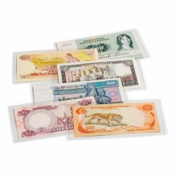 Protective covers BASIC for banknotes and Euro souvenir bills, 140 x 80 mm, pack of 50 - REF 359380