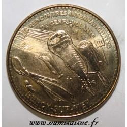62 - BERCK SUR MER - RENCONTRES INTERNATIONALES DE CERFS-VOLANTS - MDP - 2013