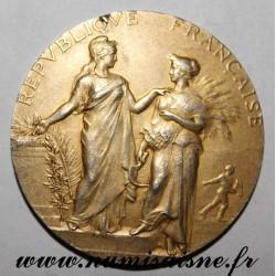 MEDAL - AGRICULTURE - AGRICULTURAL ASSOCIATION - Golden silver