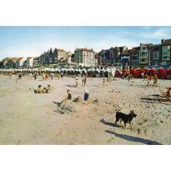 County 59 - LE NORD - MALO-LES-BAINS - THE BEACH