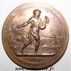 MEDAL - Agricultural Medal - LABOR SCENE - Golden Bronze