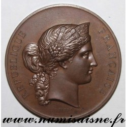 MEDAL - AGRICULTURE - AGRICULTURAL CONTEST OF ANNONAY - 1873