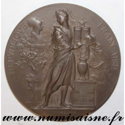 MEDAL - POLITICS - NATIONAL ASSEMBLY - SENATOR LÉONCE DE SAL