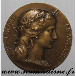 MEDAL - POLITICS - OFFERED BY EMILE PERIN - DEPUTY FOR NIÈVRE