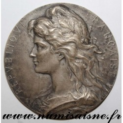 MEDAL - AGRICULTURE - BELFORT - SPECIAL COMPETITION OF THE MONTBÉLIARDE BOVINE BREED - 1911