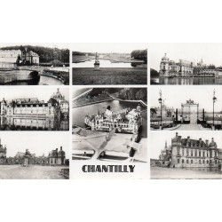 County 60500 - OISE - CHANTILLY - THE CASTLE