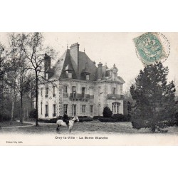 County 60590 - OISE - THE PLOYRON - 60560 - OISE - ORRY-LA-VILLE - THE WHITE POLLER