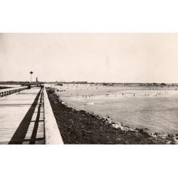 County - 62 - PAS DE CALAIS - CALAIS - GENERAL VIEW OF THE BEACH