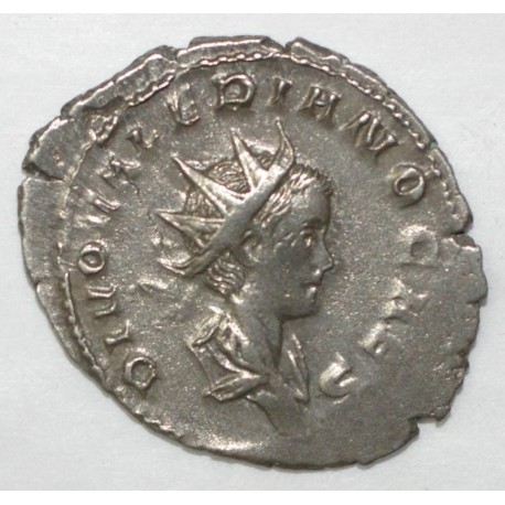 258 - 260 - SALONIN - ANTONINIEN - R/ CONSECRATIO - SUPERBE